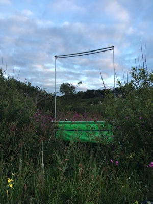 Harp Trap in place at Higher Moors