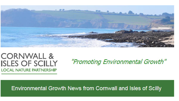 Cornwall & Isles of Scilly Local Nature Partnership appoint first ever CEO