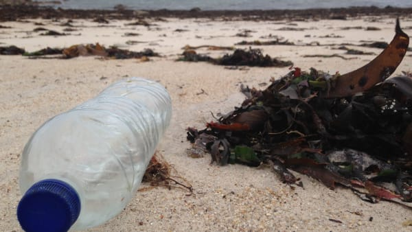 Isles of Scilly Wildlife Trust clean-up